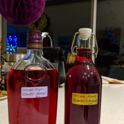 Spiced plum brandy